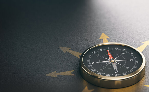 Compass for Business Orientation or Professional Guidance. Decision Help