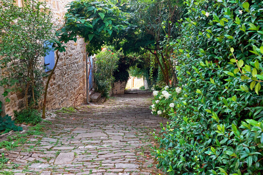 Beautiful street with medieval stone houses and way framed by foliage in Motovun, Croatia