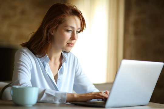 Freelance woman working with laptop at home