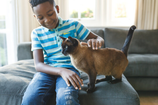 Happy african american boy sitting on couch and petting his cat in sunny living room