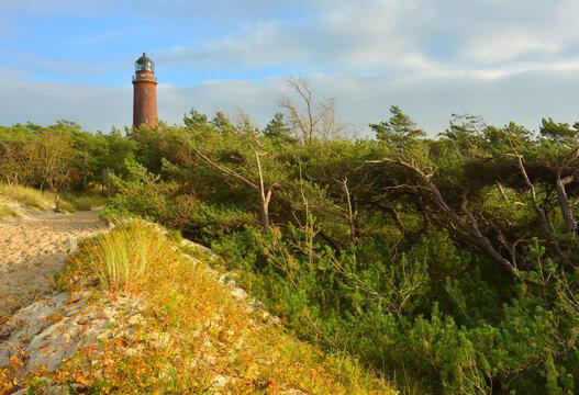 Light tower Fischland Darsser Ort and autumn landscape with sand dunes