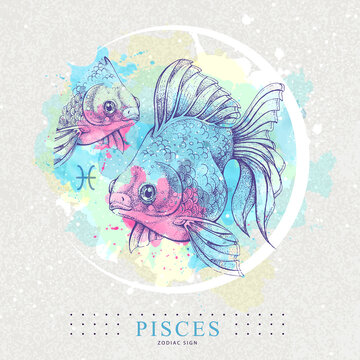 Modern magic witchcraft card with astrology Pisces zodiac sign. Healistic hand drawing Koi fish illustration