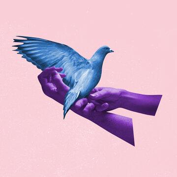 Contemporary art collage, modern creative design. Idea, inspiration, saving environment, environmental care, ecology. Preserve planet for birds and animals