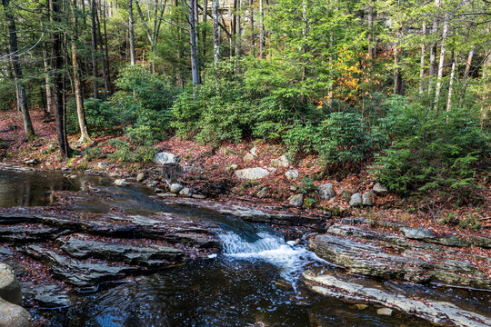 Bedrock Brook