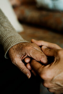 young man holds the hand of an old woman