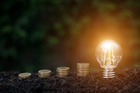 Money saving and finance concept. Money and lightbulb with light on soil. He saving the money for the future, education, investment and retirement.