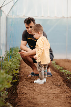 Father and boy in greenhouse