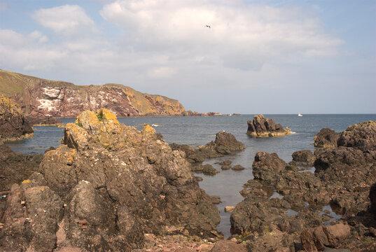 cliffs and coastal bay at St. Abbs Berwickshire