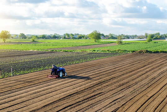 A farmer on a tractor cultivates a field. Land cultivation. Seasonal worker. Recruiting and hiring employees for work in a farm. Farming, agriculture. Preparatory earthworks before planting a new crop