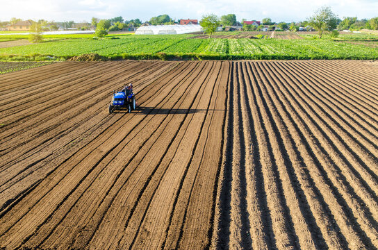 Tractor on farmland field. Farm work. Milling soil, Softening the soil before planting new crops. Plowing. Loosening surface, land cultivation. Mechanization in agriculture. Cutting rows for planting.