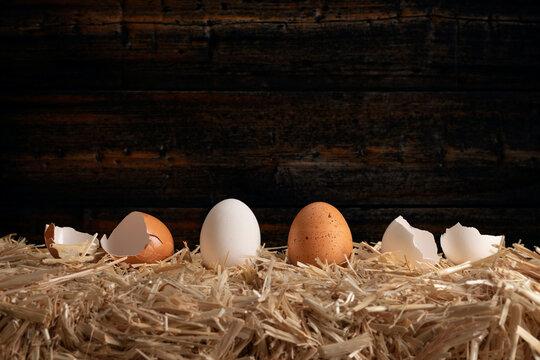 Row of eggs on hay bale