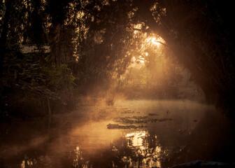 Amanecer en los canales de Xochimilco en la Ciudad de México