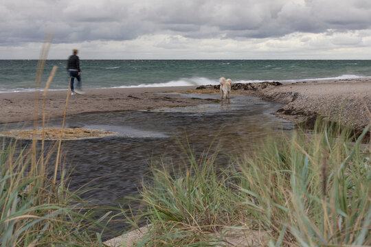 Spaziergängerin mit Hund am Strand von Dahme an der Ostsee bei schlechtem Wetter-in Höhe des Oldenburger Grabens