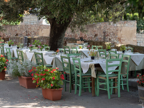 Empty Tables Set for Outdoor Lunch under an Olive Tree in a Tuscan Village in Italy