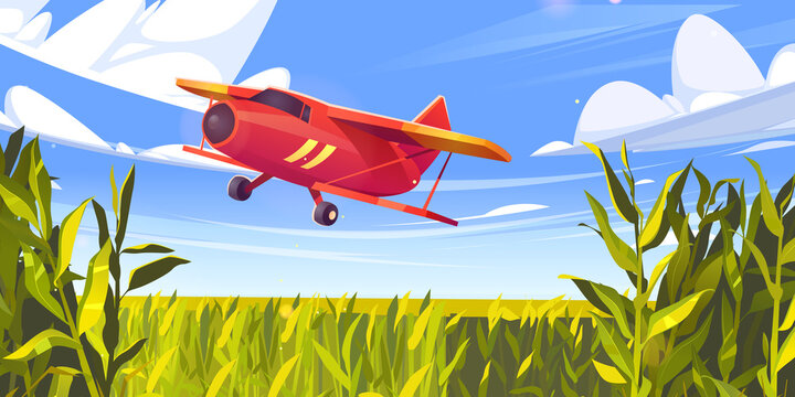 Crop duster plane flying over green corn field, farm airplane in blue cloudy sky. Agricultural cropduster machine spraying pesticides on meadow, farming aircraft, aviation, Cartoon vector illustration