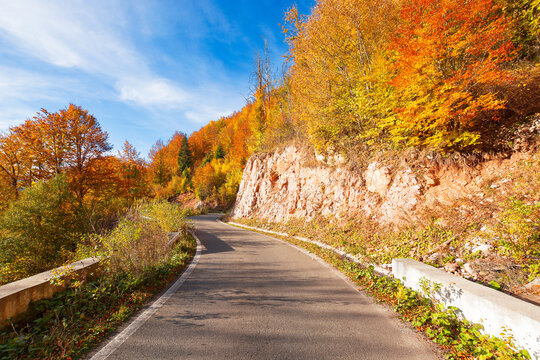 country road at sunrise. beautiful mountain scenery in fall season. trees in colorful foliage along the way. sunny weather with clouds on the sky