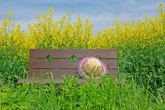 Sitzbank mit Sonnenhut in der Natur