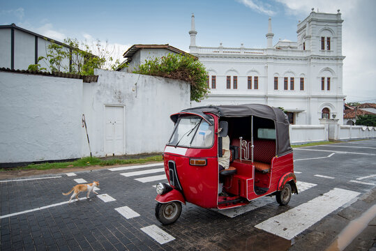 Red Tuk Tuk and little cat on the street near Galle Dutch Fort, one of travel attractions of Sri Lanka.