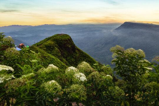 Sunrise on the mountain with moving mist for nature background at Phu Thap Buek, Phetchabun, Thailand