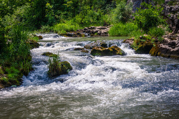 Obraz fast winding small mountain river flows among stones and gra - fototapety do salonu