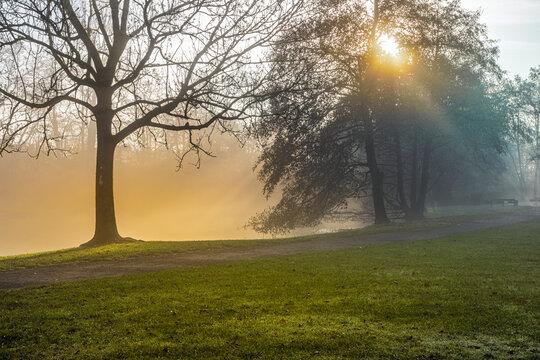 November im Revierpark Vonderort zwischen Oberhausen und Bottrop