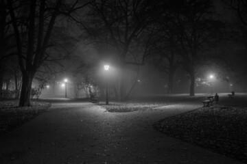 Mglista alejka w parku
