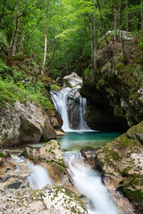 Blurred image of water flowing through the forest