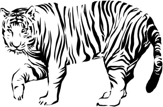 虎(寅)年賀状