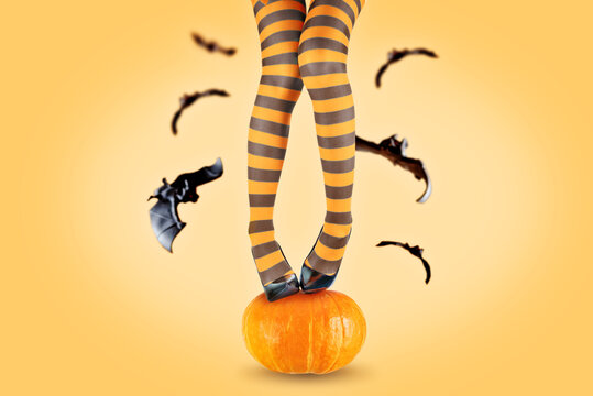 Women's legs in striped stockings on a pumpkin with fly bats