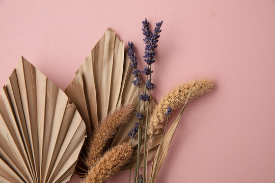 Dried tropical palm tree leaf and dry flower decoration on a pastel pink background