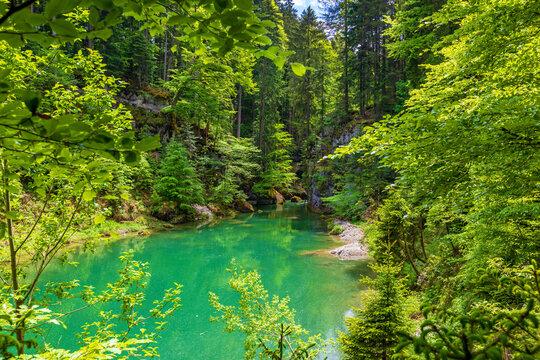 Allgäu - Haldertobel - Gunzesried - Blaichach - Stausee - Wald