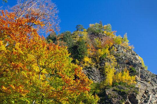 Grünten - Steinbruch - Herbst - Burgberg - Allgäu - bunt