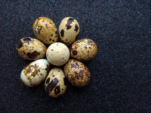 eight quail eggs in the shape of a flower on black background closeup