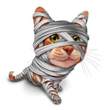 Halloween Cat Mummy