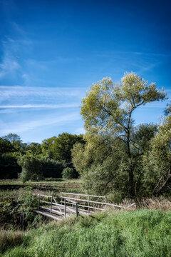 Skane Countryside Wooden Bridge Vertical