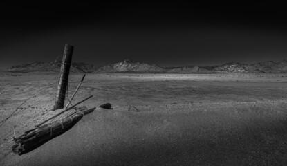 Obraz Desert desolation - fototapety do salonu