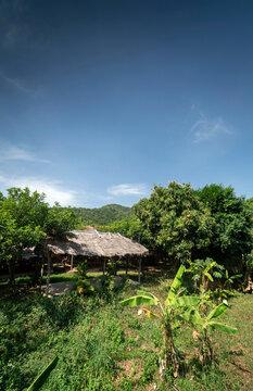 traditional bungalow in tropical fruit farm plantation near kampot cambodia
