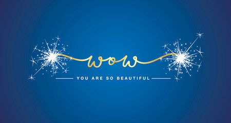 Fototapeta Wow you are so beautiful gold handwritten typography sparkle firework blue background obraz