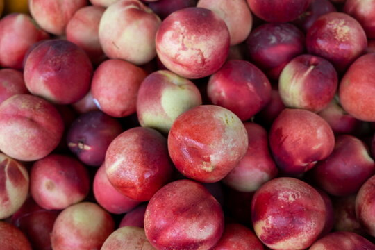 Nectarine, (Prunus persica), smooth-skinned peach sold at the city market
