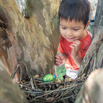 Cute 3 year old mixed race boy finds a chocolate egg on an Easter Egg Hunt