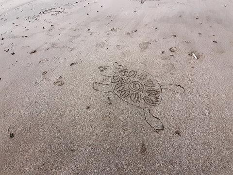 une tortue dessinée dans le sable.  a turtle drawn in the sand