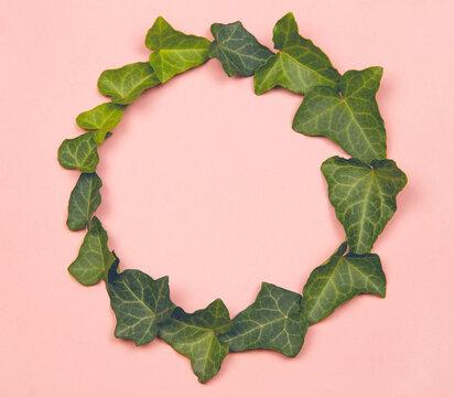 Green leaves circle