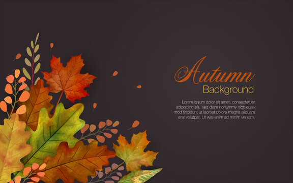 Autum leaves background in brown with colorful group of falling leaves in lower left and copyspace of text area.