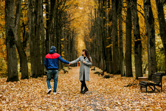 A guy and a girl are walking along the alley of the park in autumn. A romantic date, a walk, family time. Rear view, space for text
