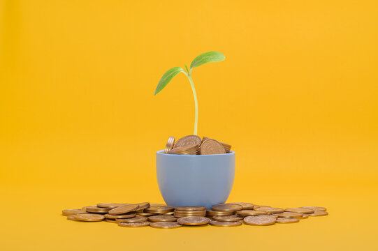 save money, invest in stocks, financial growth, income