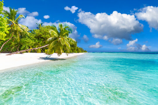 Idyllic tropical beach landscape for background or wallpaper. Design of tourism for summer vacation holiday destination concept. Amazing nature scenic, luxury traveling background, sunny blue sky