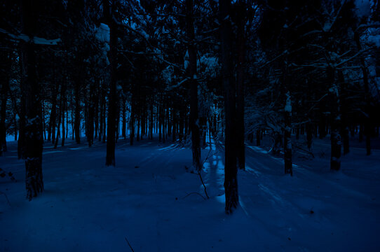 Mountain Road through the snowy forest on a full moon night. Scenic night winter landscape of dark blue sky with moon and stars
