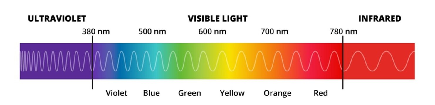 Vector diagram with the visible light spectrum. Visible light, infrared, and ultraviolet. Electromagnetic spectrum visible to the human eye. Violet, Blue green, yellow, orange, red color gradient.
