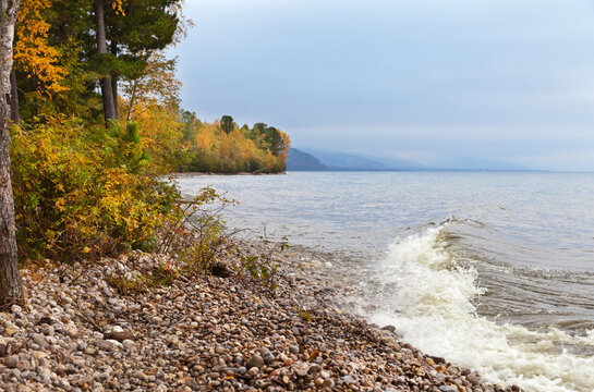 Shore of Baikal Lake on a windy autumn day. Yellowed deciduous trees in the coastal forest. Changing seasons. Beautiful autumn landscape. Natural background
