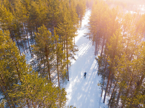 Man cross country skiing on track winter forest tree. Aerial top view